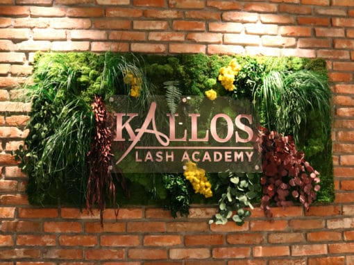 Kallos Lash Academy
