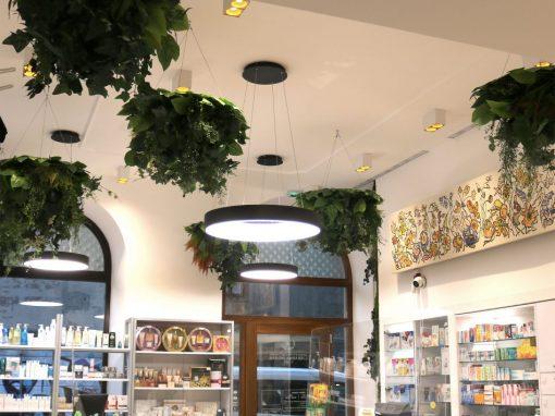 Brajda Pharmacy
