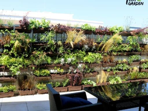 Vertikalni vrt na terasi