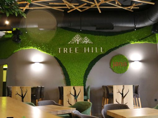 Tree Hill – Prelog